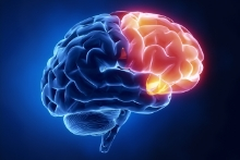 Frontal Lobe Brain Injuries